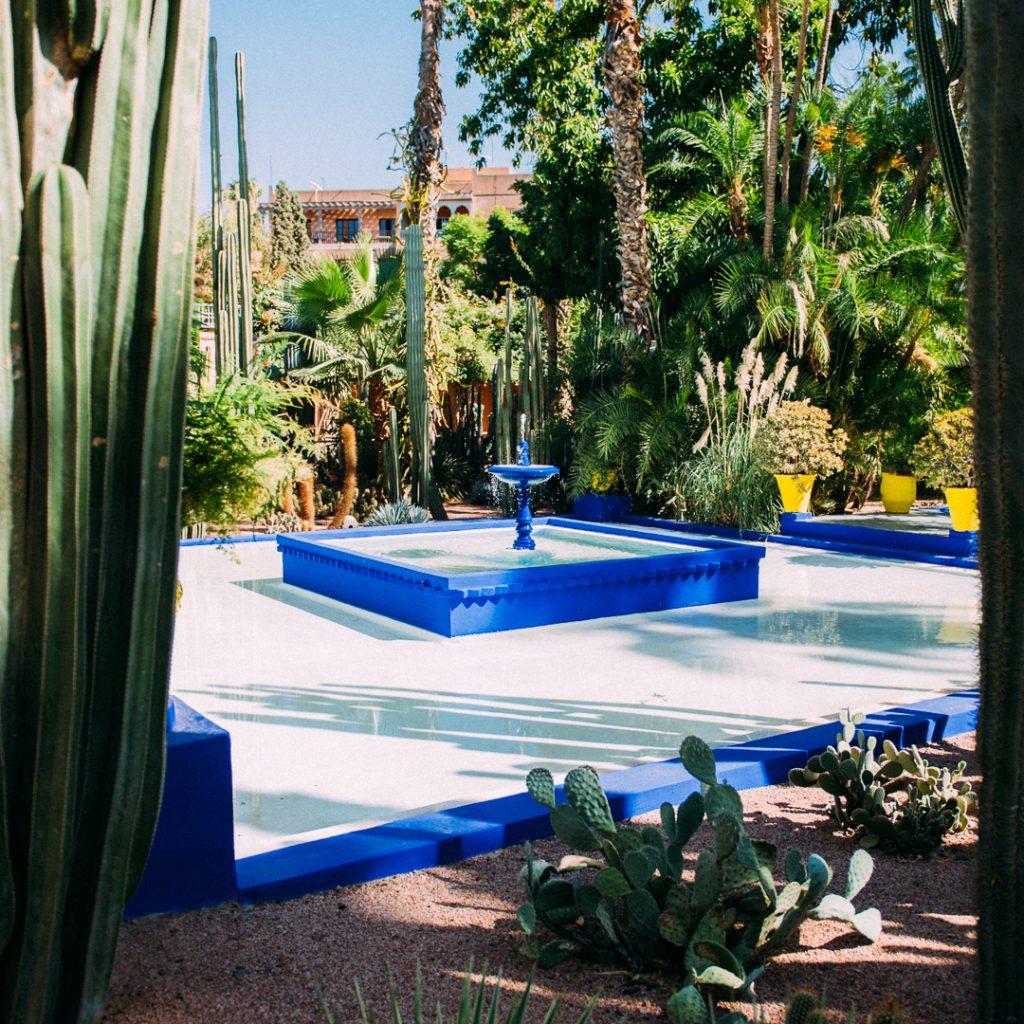 """alt=""""Marrakech Majorelle garden"""""""